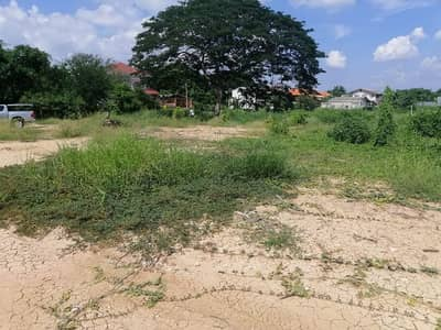 Land for Rent in Mueang Lop Buri, Lopburi - Land for rent, 300 square meters, Lopburi, Phrommas subdistrict