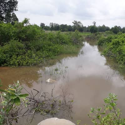 Land for Sale in Kham Thale So, Nakhonratchasima - Land for sale, 180,000 per rai.