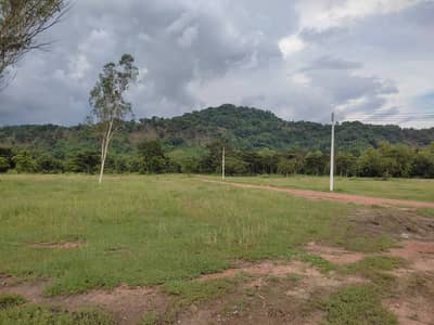 Land for Sale in Pak Phli, Nakhonnayok - Land with mountain view, natural atmosphere