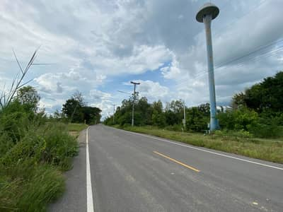 Land for Sale in Chom Bueng, Ratchaburi - Title deed is divided for sale, 550,000 baht per rai.