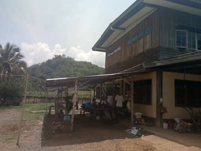 Land for Sale in Na Wang, Nongbualamphu - A vineyard with a house