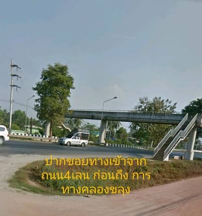 Land for Sale in Khlong Khlung, Kamphaengphet - The land has a title deed of 10 rai.