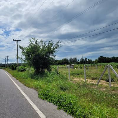 Land for Sale in Ban Pong, Ratchaburi - Title deed land, next to the asphalt road, 100 sq. wa.