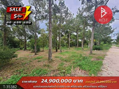 Land for Sale in Klaeng, Rayong - Land for sale with durian orchard, area 20 rai, Klaeng, Rayong.