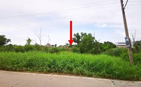 Land for Sale in Khlong Luang, Pathumthani - Land for sale in Soi Bongkot 47, along Khlong Song (Property code 202178).