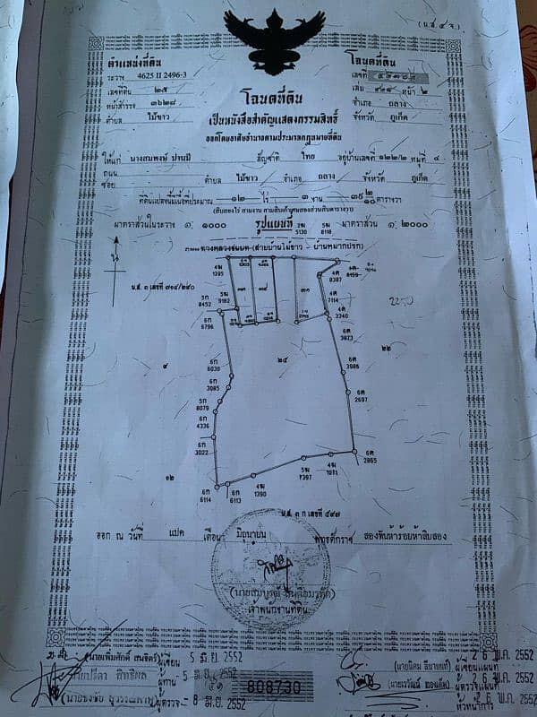 Land for sale, Mai Khao Beach, Phuket, the cheapest price, reducing COVID