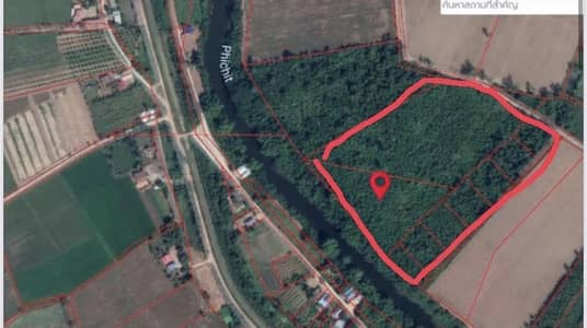 Land for Sale in Taphan Hin, Phichit - Land with teak trees, Taphan Hin District, Phichit Province, 30 rai, can be sold separately.