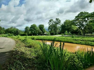 Land for Sale in Mae Taeng, Chiangmai - Land for sale 30-0-99 rai, next to the irrigation canal, Mae Taeng District, Chiang Mai.