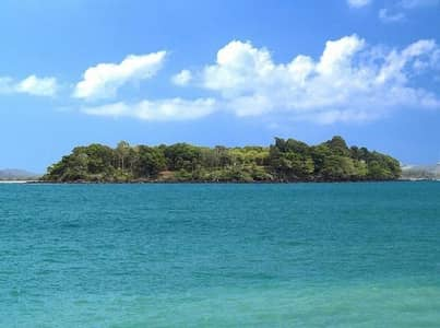 Land for Sale in Ko Chang, Trat - BL045 Land for sale, the most beautiful in Trat province, 3 sides, 360 degree panoramic view, Laem Ngop district, Tan Khu Bay, Trat province, 37 rai, is a Nor Sor 4 title deed.