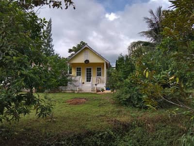 Land for Sale in Pak Chong, Nakhonratchasima - Land for sale with house, beautiful view, good atmosphere, Pak Chong, Nakhon Ratchasima