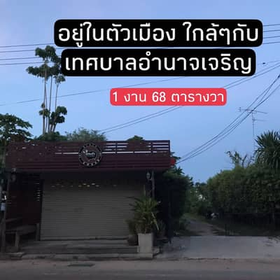 Land for Sale in Mueang Amnat Charoen, Amnatcharoen - Land for sale with buildings For sale by owner, area 168 square wa, in the heart of Amnat Charoen city. A lot of space can continue to build a house.