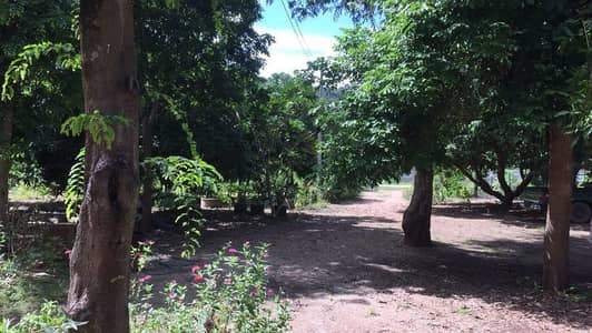 2 Bedroom Home for Sale in Ko Kha, Lampang - House for sale