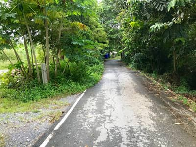 Land for Sale in Mueang Nonthaburi, Nonthaburi - Land near Rama 5 roundabout, Ratchaphruek Road, 531 sq wa. Filled, next to Soi two sides. Opposite Bang Si Muang Police Station
