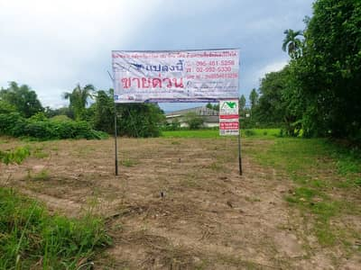 Land for Sale in Pak Phli, Nakhonnayok - Land for sale, 100 sq m. , good location, located in the community