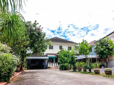 Home for Sale in Mueang Surat Thani, Suratthani - Quick sale! Big single house, area 200 sq. wa. , Mueang Surat Thani. You can come in