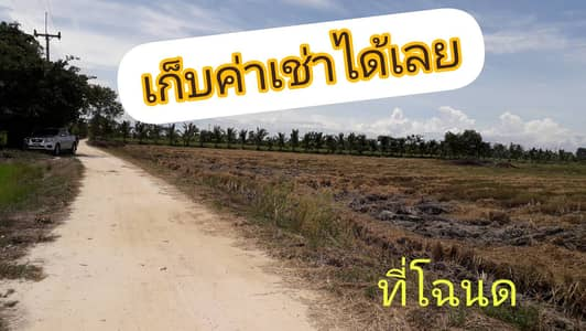 Land for Sale in Khanu Woralaksaburi, Kamphaengphet - Land for sale with tenants, area 23-3-92 rai, on two sides of the road.