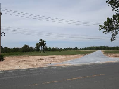Land for Sale in Don Chedi, Suphanburi - Land for sale, beautiful 2 rai title deed, just over a hundred meters down the highway.