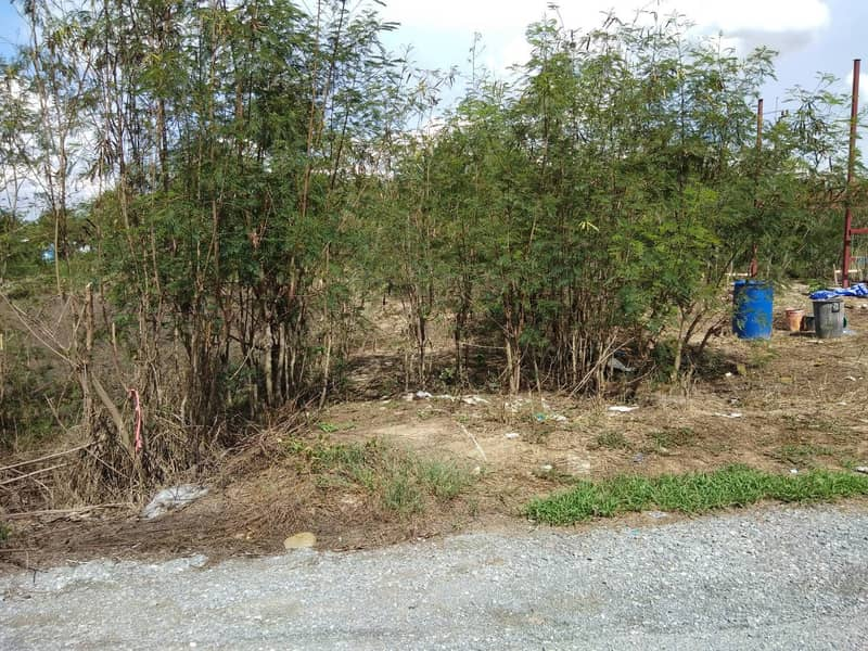 Land can be divided into 50 square meters for sale with the owner. Can make a house building contract