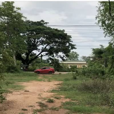 Land for Sale in Kumphawapi, Udonthani - Land for sale in a beautiful golden location, cheap price