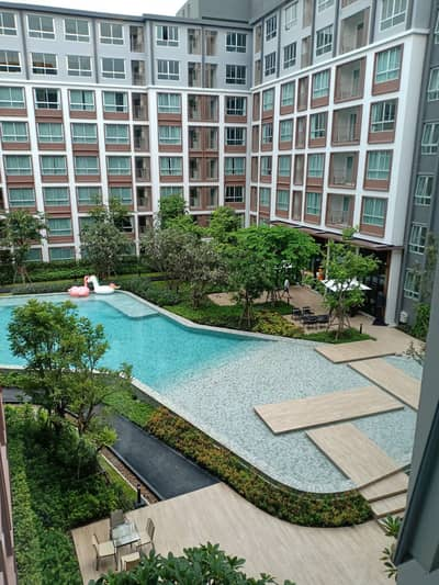 1 Bedroom Condo for Rent in Mueang Chiang Mai, Chiangmai - Dcondo ping corner room