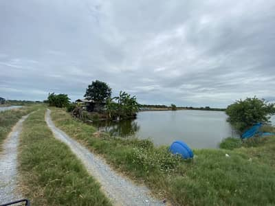 Land for Sale in Bang Len, Nakhonpathom - Land for sale, the area of 14 rai is a fish pond, Don Tum Subdistrict, Bang Len District, Nakhon Pathom Province.