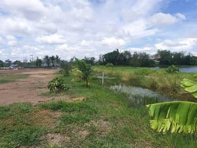 Land for Sale in Chom Thong, Bangkok - Empty land filled in Soi Kaew Chaem, area of about 2 rai, divided for sale at least 100 square wa.