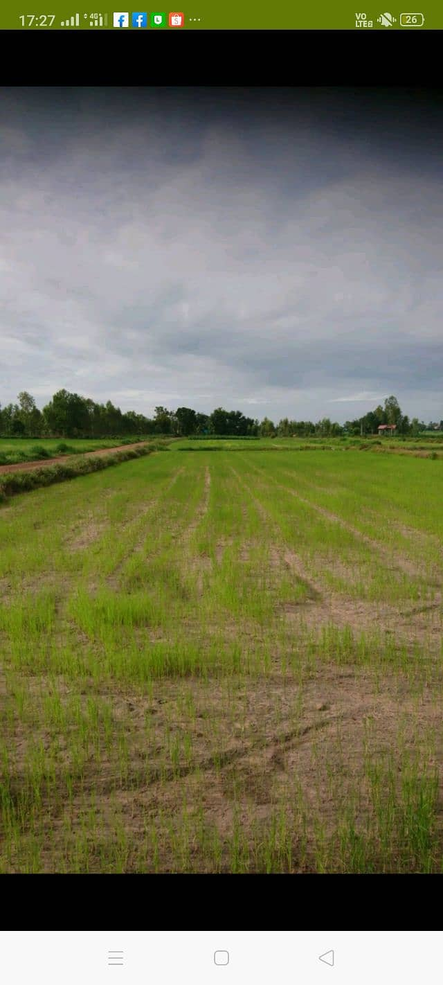 Land for sale in Nong Han, Udon Province, 5 rai 2 ngan 65 square wah.