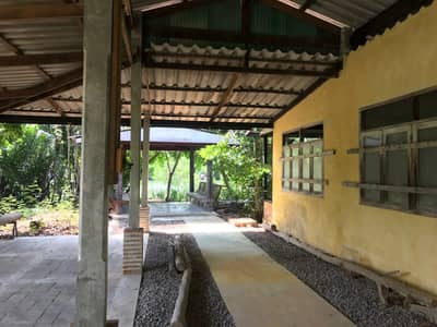 2 Bedroom Home for Rent in Mueang Samut Songkhram, Samutsongkhram - House for rent in Rimnam, Samut Songkhram