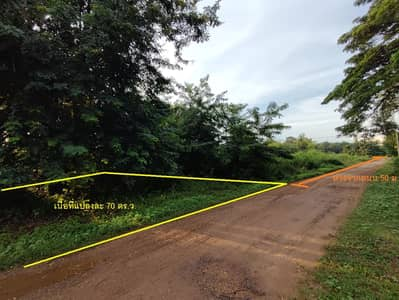 Land for Sale in Mueang Ubon Ratchathani, Ubonratchathani - Land for sale in Kham Yai Subdistrict, 70 square meters, with 2 plots