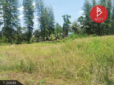 Land for Sale in Pathio, Chumphon - Land for sale Behind the Gulf of Thailand, Pathio District, Chumphon Province