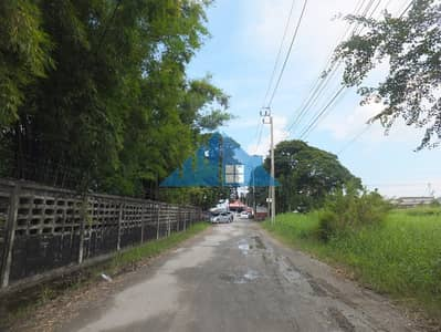 Land for Rent in Lat Krabang, Bangkok - Land for rent, 132 sq m. and 133 sq m. , Soi Romklao 30, into Soi 100 meters, good location, suitable for a warehouse, showroom.