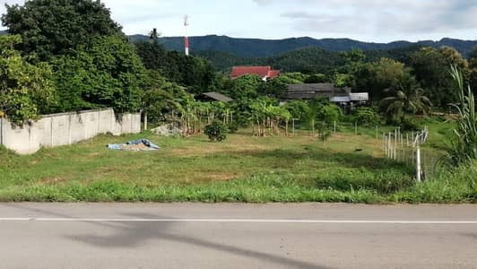 Land for Sale in Mae Tha, Lamphun - Good location land, steps on the main road, beautiful view, good price at Mae Tha, Lamphun