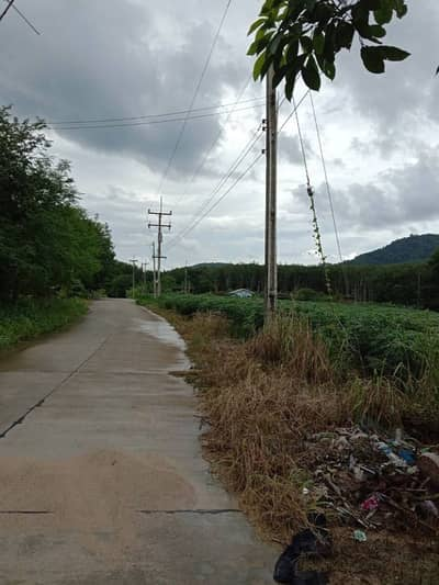 Land for Sale in Ban Khai, Rayong - Land for sale, 7 Rai mountain view.