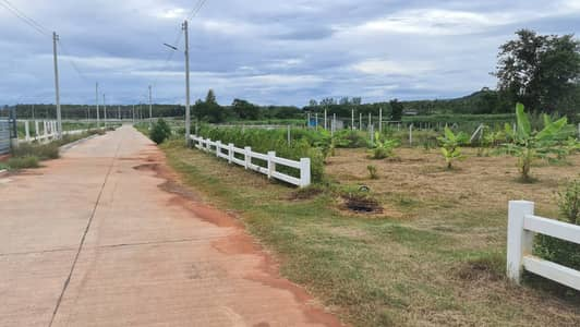 Land for Sale in Chom Bueng, Ratchaburi - Land for sale near a rural road just near Somdet Hospital, etc. and Chom Bueng Market