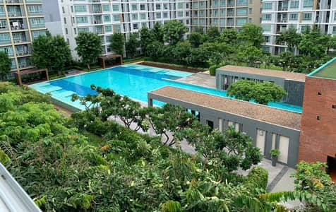 1 Bedroom Condo for Rent in Mueang Chiang Mai, Chiangmai - Rent D sign condo, next to Central Festival, 7,000 month