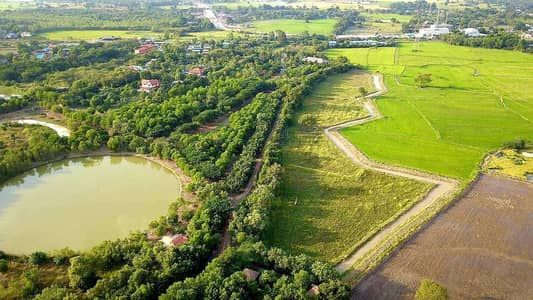 Land for Sale in Phachi, Ayutthaya - 🙏 selling by owner 🙏🏻 🔥‼️ Quick sale 🚨‼️🔥