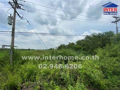 Land for Sale in Wang Noi, Ayutthaya - Land 5 rai, Soi Suwaphan 2, Wang Noi, Ayutthaya.