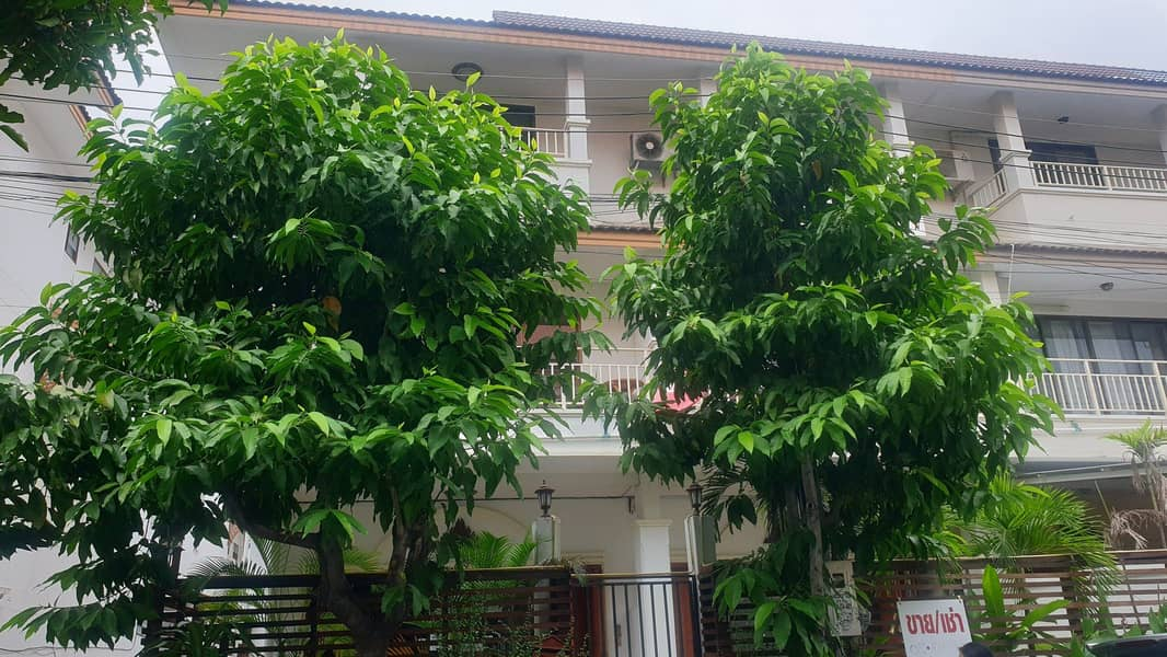 Sell townhome next to Nimman. Sirimangkalachan, quick sale, lower than the estimated price