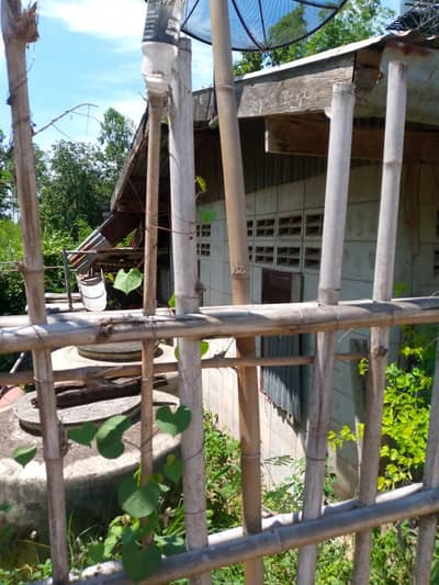 1 Bedroom Home for Sale in Lam Sonthi, Lopburi - House and land for sale