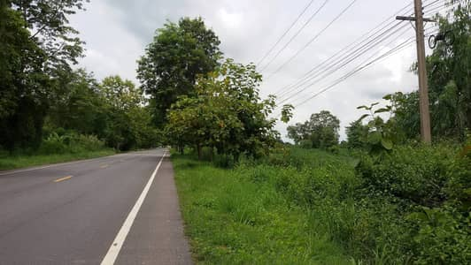 Land for Sale in Noen Maprang, Phitsanulok - Land for sale 40 rai 3 ngan 64 sq m. Next to the road