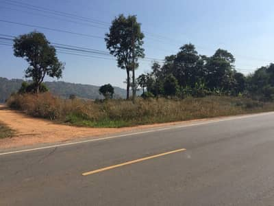 Land for Sale in Nam Nao, Phetchabun - Land with garden