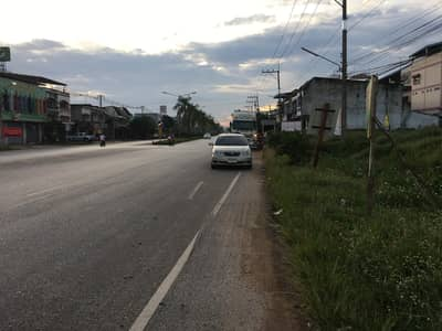 Land for Sale in Sadao, Songkhla - Land for sale, land reclamation, Klong Ngae commercial area, Songkhla