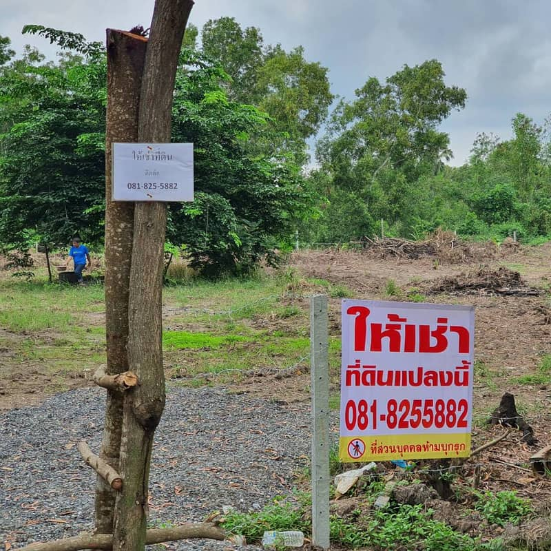 Land for rent in Khlong 6, Pathum Thani