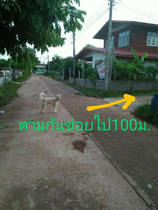 Vacant land in the middle of Na Muang village