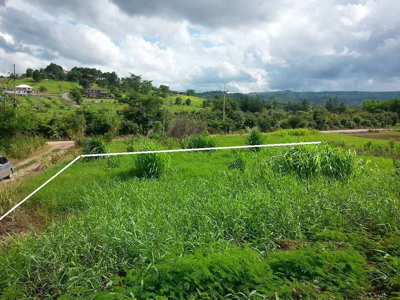 Land for sale, title deed, Khao Kho District, Phetchabun Province, 118 square wah 2 plots