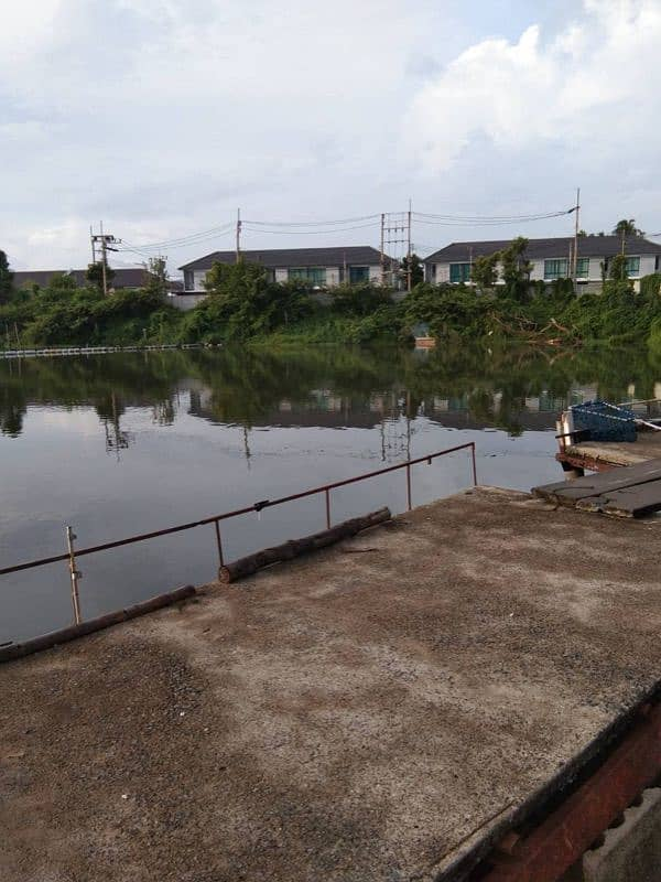Land for sale in Kathu Phuket cheap.