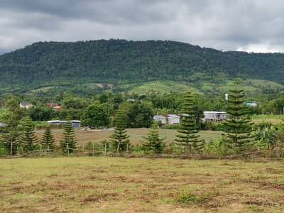 Land for Sale in Khao Kho, Phetchabun - Khao Kho Sea View Point Land