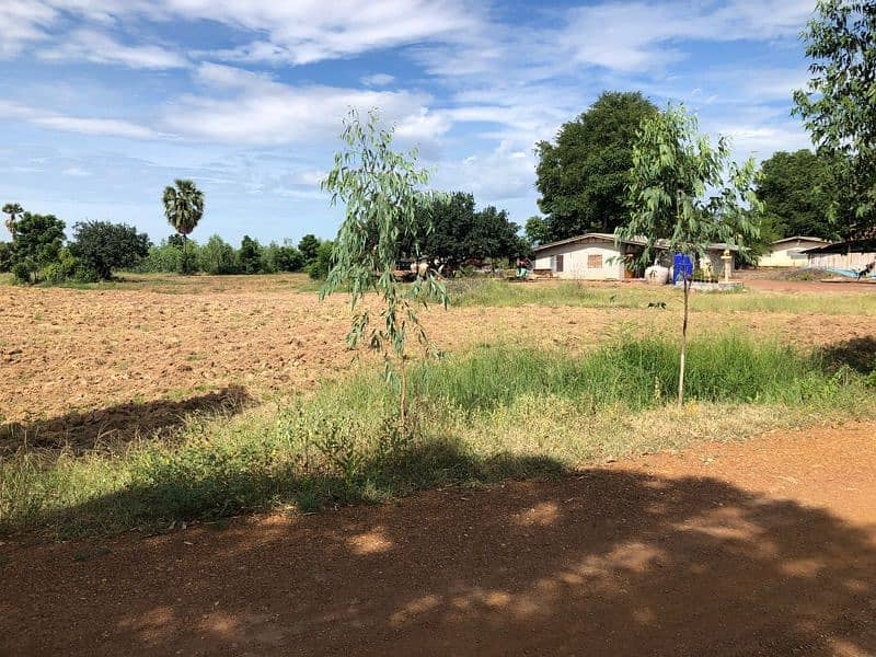 Land for sale, 6 rai of title deed over 160,000 per rai, free of charge