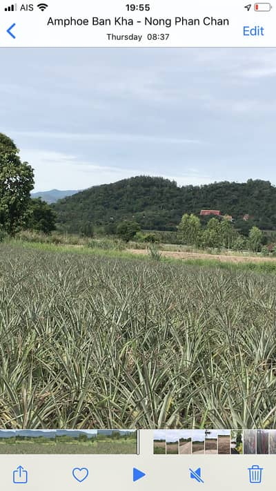 Land for Sale in Suan Phueng, Ratchaburi - Land sale of Panorama view for building house