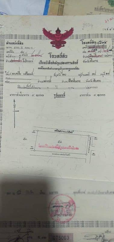 Land for Sale in Mae Lao, Chiangrai - Land of Pong Phrae, Mae Lao